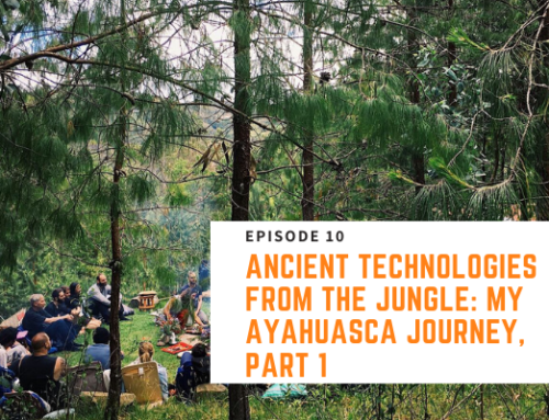 010 // Nick Pineault – Ancient Technologies From The Jungle: My Ayahuasca Journey, Part 1