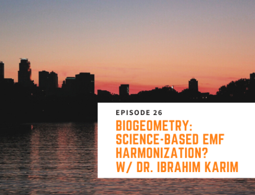 026 // Dr. Ibrahim Karim – BioGeometry: Science-Based EMF Harmonization?