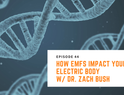 044 // Dr. Zach Bush – How EMFs Impact Your Electric Body