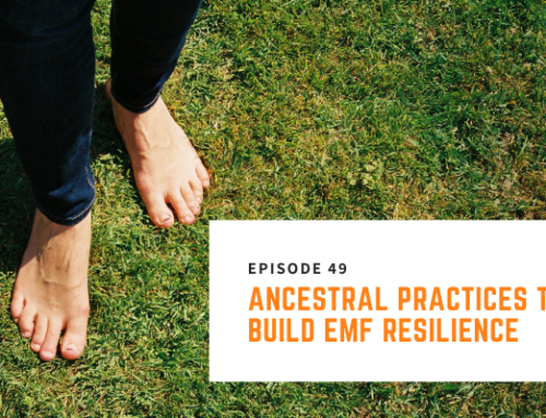 049 // Nick Pineault – Ancestral Practices to Build EMF Resilience