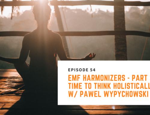 054 // Pawel Wypychowski – EMF Harmonizers – Part 3: Time to Think Holistically